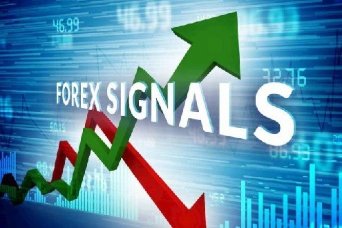Forex trading in india 2020